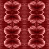 Fond floral abstrait sans joint Image stock