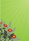 Fond floral abstrait. Vecteur. Images stock