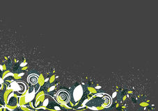Fond floral aux nuances colorées vibrantes Photos stock