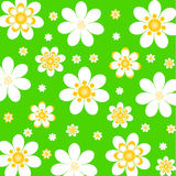 Fond floral avec des marguerites. vecteur Photos stock