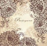 Fond floral avec les chrysanthemums de floraison, ha Images stock