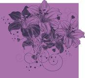 Fond floral avec les lis et le coeur de floraison Images stock