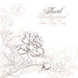 Fond floral avec les pensées et la pivoine Image stock