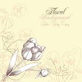 Fond floral avec un tulipe et pensées Photographie stock libre de droits