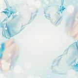 Fond floral bleu en pastel avec le bokeh Images stock