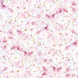 Fond floral d'aquarelle Photographie stock