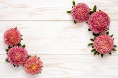 Fond floral d'automne - asters roses sur la table en bois blanche images stock