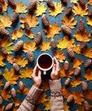 Fond floral d'automne Une tasse de café dans des mains du ` un s de femme sur le fond vert avec les feuilles et les cônes jaunes  Image stock