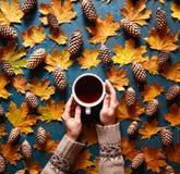 Fond floral d'automne Une tasse de café dans une main du ` s de femme sur le fond vert avec les feuilles et les cônes jaunes d'ér photographie stock