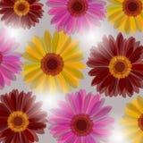 Fond floral d'imagination Photos stock
