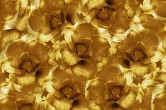 Fond floral de brown+ des roses Composition de fleur Fleurs avec des gouttelettes d'eau sur des pétales Plan rapproché Image libre de droits