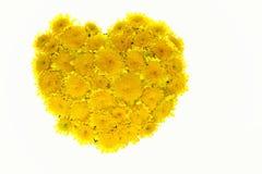 Fond floral de coeur de Valentine. Photos libres de droits