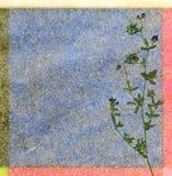 Fond floral de couleur Photographie stock