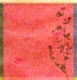 Fond floral de couleur Photo stock