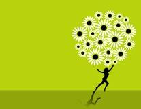 Fond floral de marguerite illustration de vecteur