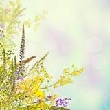 Fond floral de vacances Images stock