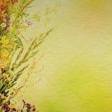 Fond floral de vacances Image stock