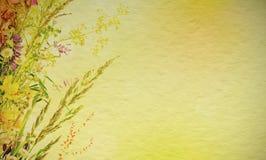 Fond floral de vacances Photographie stock libre de droits