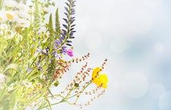 Fond floral de vacances Image libre de droits