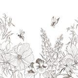 Fond floral de vintage sans couture de frontière Concept de fleur Conception de vecteur Photographie stock
