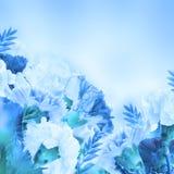 Fond floral des roses et des lis Photo stock