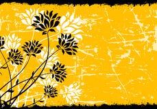Fond floral grunge Photo stock