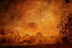 Fond floral grunge photo libre de droits