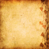 Fond floral grunge Photographie stock libre de droits