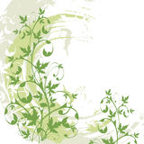 Fond floral grunge de vecteur Images libres de droits