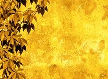 Fond floral jaune Image libre de droits