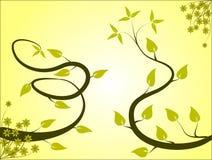 Fond floral jaune-clair Photos libres de droits