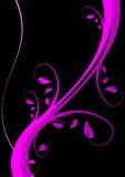 Fond floral magenta Photos libres de droits