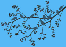 Fond floral, oiseaux illustration stock