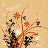 Fond floral orange Images libres de droits