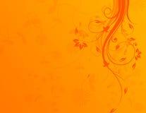 Fond floral orange Photo stock