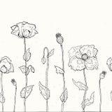 Fond floral. Pavots tirés par la main Photographie stock