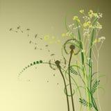 Fond floral, pissenlit Photo libre de droits