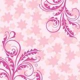 Fond floral rose décoratif Photo libre de droits