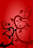 Fond floral rouge Photos libres de droits