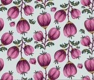 Fond floral sans couture avec les fleurs rondes roses sur le blanc han photos stock
