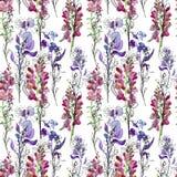 Fond floral sans joint avec des fleurs Retrait Fond sans couture Image stock