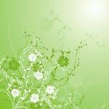 Fond floral, vecteur Photos libres de droits