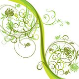 Fond floral, vecteur Photographie stock libre de droits