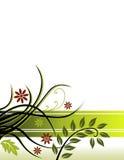 Fond floral vert Images libres de droits