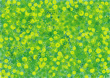 Fond floral vert Image stock