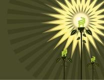 Fond fluorescent d'ampoule Photos libres de droits