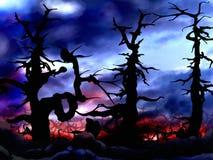 Fond foncé et effrayant d'arbres forestiers Photographie stock libre de droits