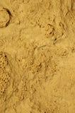 Fond fossile en pierre Photographie stock