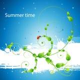 Fond frais d'été avec la configuration et la coccinelle Photographie stock libre de droits