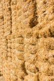 Fond frais de balles de foin de paille Photographie stock libre de droits